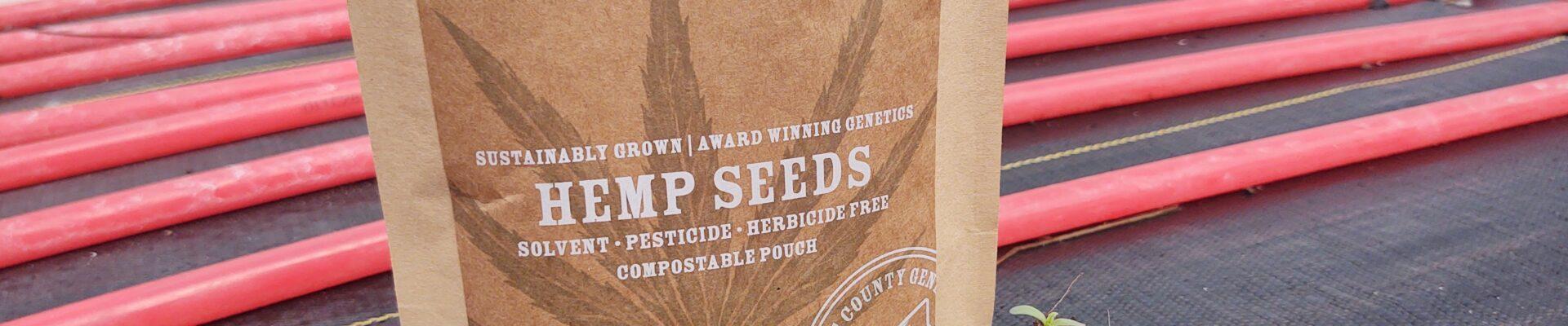 Charlotte Q Fem. Hemp Seed